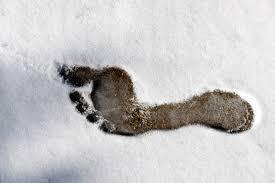 Jak si užít zimu v barefoot botách? Nechte si poradit!