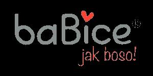 BaBice logo